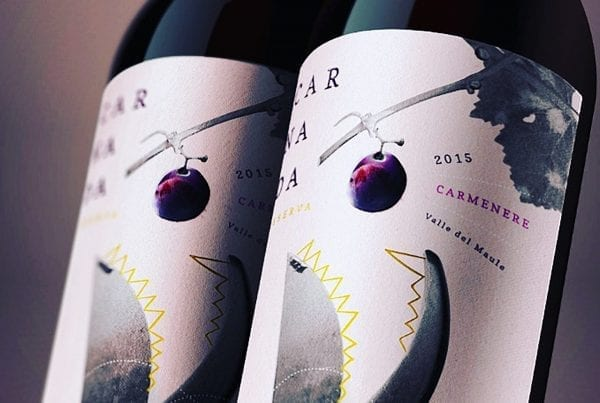 Carnada Exclusive collection label design